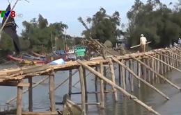 Ngư dân Quảng Ngãi hợp sức xây cầu đón Tết