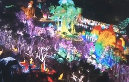 Lễ hội đèn lồng trước thềm Tết Nguyên đán tại Trung Quốc