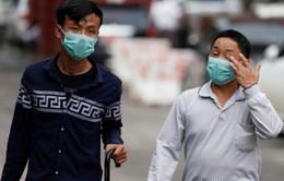 Tăng cường giám sát, phát hiện kịp thời cúm độc lực cao