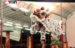 Việt Nam đoạt giải Nhất Liên hoan Lân Sư Rồng quốc tế