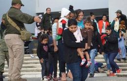 Mexico giải cứu gần 200 người nhập cư