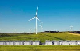 Tesla sẽ xây dựng mạng lưới năng lượng mặt trời lớn nhất thế giới trị giá 25 triệu USD