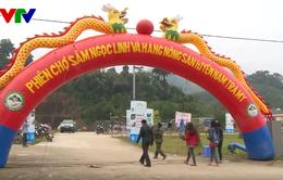 Quảng Nam: Phiên chợ sâm núi Ngọc Linh thu hơn 4 tỷ đồng