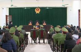 Xét xử sơ thẩm công khai vụ án hình sự đối với Hoàng Đức Bình và Nguyễn Nam Phong