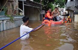 Indonesia sơ tán hàng nghìn người khỏi Jakarta vì lũ lụt