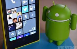 """Android là """"vua"""", Windows Phone sắp """"băng hà"""""""