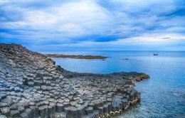 Phú Yên sẽ xử lý dứt điểm các khu tập kết rác ven các đầm, vịnh