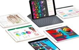 """iPad """"độc cô cầu bại"""" tại thị trường máy tính bảng"""
