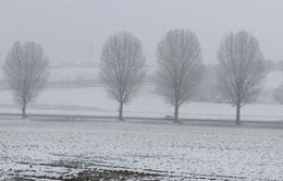 Pháp nâng cảnh báo tình trạng băng tuyết tại Đông Bắc và Tây Bắc