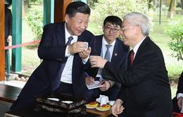 Tổng Bí thư hai nước Việt, Trung trao đổi Thư chúc mừng năm mới
