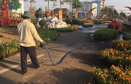 Lần đầu tiên có đường hoa xuân tiền tỷ ở Bình Phước