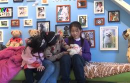 Chó - người bạn thân của nhiều gia đình tại Trung Quốc