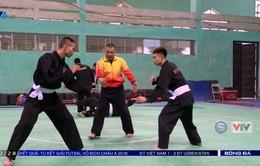 ĐT Pencak Silat tập luyện những ngày cuối năm