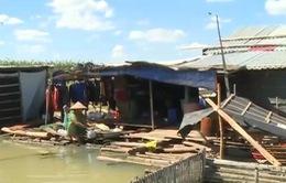 Mong mỏi được lên bờ của người dân xóm Việt kiều