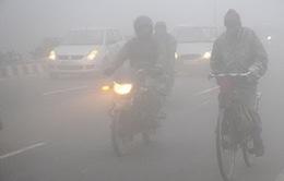 Sương mù làm tê liệt giao thông tại New Dehli, Ấn Độ