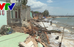 Triều cường và xâm thực bờ biển đe dọa cuộc sống người dân Bình Thuận