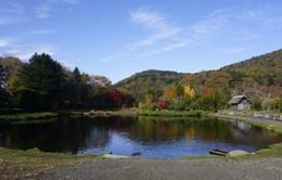 Sắc màu Nhật Bản 2018 - Tập cuối: Trải nghiệm thiên nhiên tươi đẹp tỉnh Yamanashi