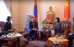 Hiệp hội luật sư Mông Cổ triển khai hỗ trợ pháp lý cho người Việt