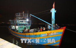 Đà Nẵng: Cứu nạn và lai dắt thành công tàu cá cùng 11 ngư dân gặp nạn về bờ an toàn
