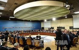 NATO đưa Ukraine cùng 3 nước vào danh sách quốc gia muốn gia nhập liên minh
