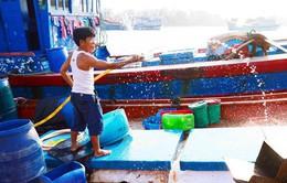 """Thiếu lao động đi biển, nhiều tàu cá Quảng Ngãi """"nằm bờ"""""""