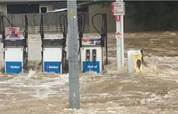 Ngập lụt nghiêm trọng tại Queensland, Australia