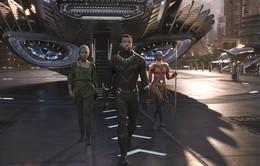 """Black Panther đã """"xô đổ"""" những khuôn mẫu về dòng phim siêu anh hùng Marvel như thế nào?"""