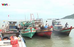 Nạn trộm cắp ngư lưới cụ hoành hành trên biển