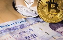 Hàn Quốc có thể sẽ dỡ bỏ lệnh cấm huy động vốn bằng tiền ảo vào cuối tháng 3