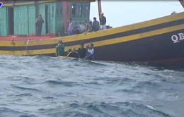 BĐBP Quảng Bình kịp thời cứu 7 thuyền viên QB 92147 TS bị đắm tàu