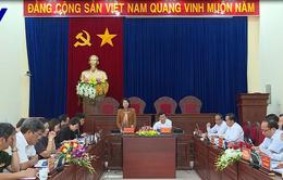 Phó Chủ tịch nước Đặng Thị Ngọc Thịnh làm việc tại Gia Lai