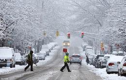 Bão tuyết gây đảo lộn cuộc sống ở Đông Bắc nước Mỹ