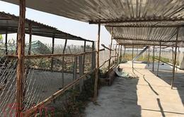 Kon Tum: Xử lý nghiêm trường hợp xây dựng nhà ở, công trình kiến trúc trái phép