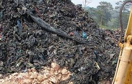 Lâm Đồng: Phát hiện nhà máy chôn trái phép khoảng 40.000 tấn chất thải rắn