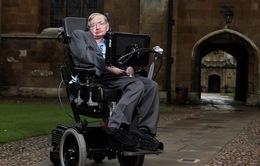 Stephen Hawking - nhà vật lý có bộ não thiên tài