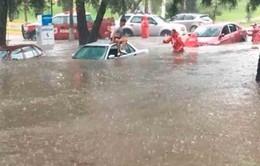 Mưa đá bất ngờ gây ngập đường phố ở Mexico