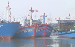 Ngư dân khó khăn tìm vốn đóng tàu theo Nghị định 17