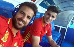 Tây Ban Nha triệu tập đội hình, Fabregas và Morata bị loại