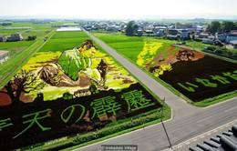 Ngỡ ngàng với những bức vẽ khổng lồ trên đồng lúa tại Nhật Bản