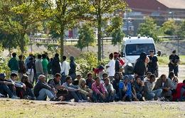Người nhập cư Pháp tẩy chay bữa ăn miễn phí