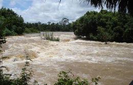 Đắk Lắk: Tìm thấy thi thể 2 nạn nhân bị nước cuốn trôi trên sông Sêrêpốk