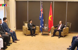 Thủ tướng tiếp các nhà khoa học người Việt tại Queensland, Australia