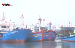 Ngư dân sẽ được hỗ trợ 35% kinh phí đóng tàu xa bờ