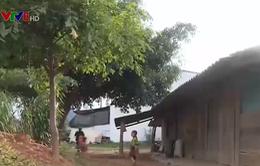 Đắk Lắk: Cảnh báo nạn dụ dỗ trẻ em đi lao động ở các tỉnh phía Nam