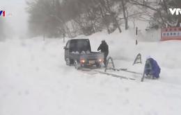 Nhật Bản: Giao thông gián đoạn nhiều nơi do bão và gió lớn
