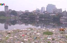 Chất lượng nguồn nước mặt suy thoái ngày càng nghiêm trọng