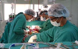 Tỷ lệ người mắc tim mạch ở Việt Nam tăng cao