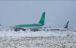 Ireland: Tuyết rơi dày khiến các chuyến bay bị hoãn, hủy