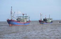 Quảng Nam: Kịp thời cứu nạn tàu câu mực bị hỏng máy trên biển