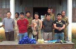 Quảng Trị: Phá thành công chuyên án lớn, thu giữ 50.600 viên ma túy tổng hợp